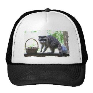 Raccoon and Cookie Jar Trucker Hat