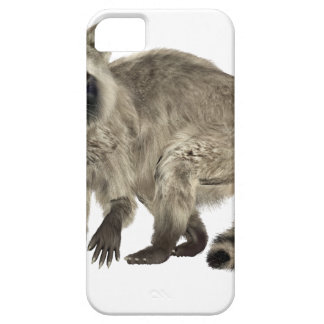 Raccoon at Attention iPhone SE/5/5s Case