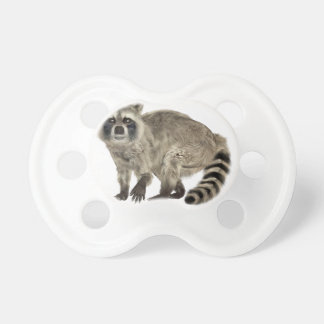 Raccoon at Attention Pacifier