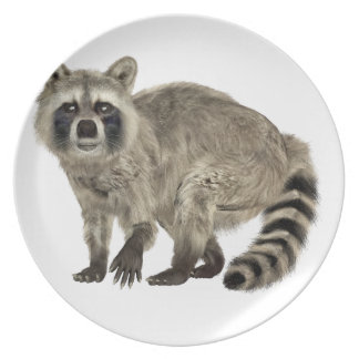 Raccoon at Attention Plate