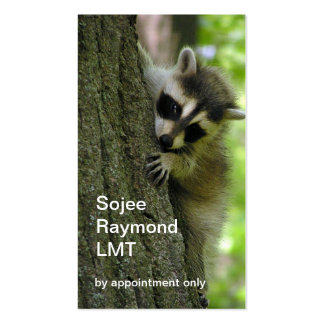 Raccoon Baby business card