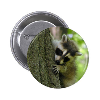 Raccoon Baby Button