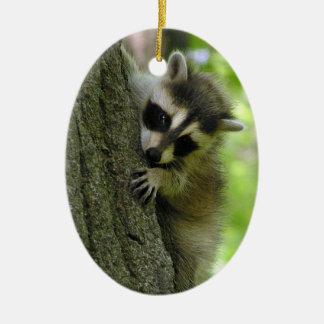 Raccoon Baby Customizable Ornament
