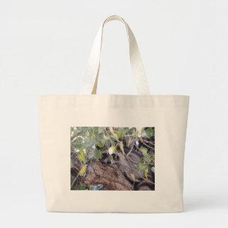 Raccoon Bags