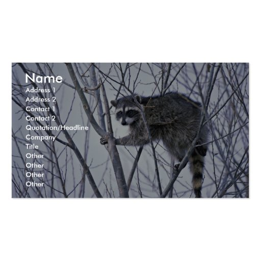 Raccoon Business Card Template