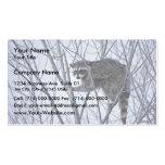Raccoon Business Card Template