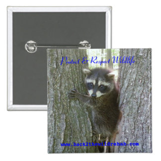 Raccoon Buttoon 2 Inch Square Button