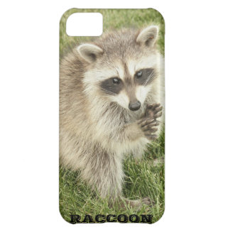 Raccoon iPhone 5C Cover