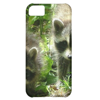 Raccoon Cover For iPhone 5C