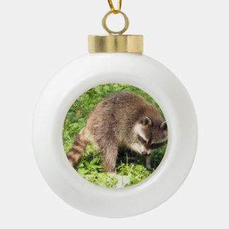 Raccoon Ceramic Ball Christmas Ornament