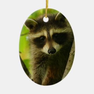 raccoon ceramic ornament