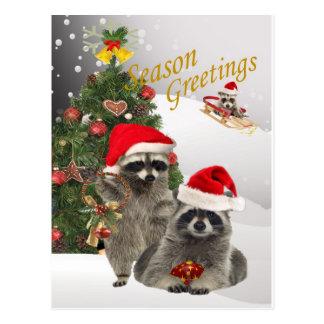 Raccoon Christmas A Time For Fun Postcard