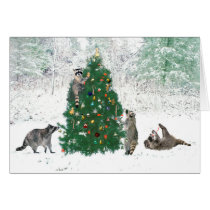 Raccoon Christmas Card