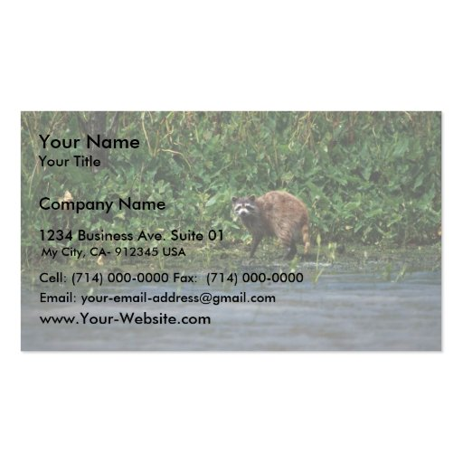 Raccoon Double-Sided Standard Business Cards (Pack Of 100)