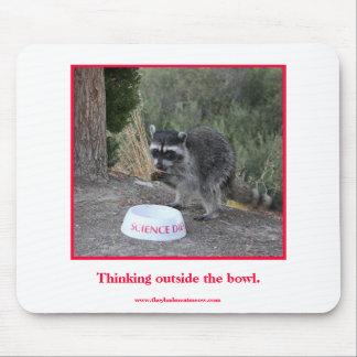 Raccoon eating kibble. mouse pad