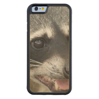 Raccoon Face Carved® Maple iPhone 6 Bumper