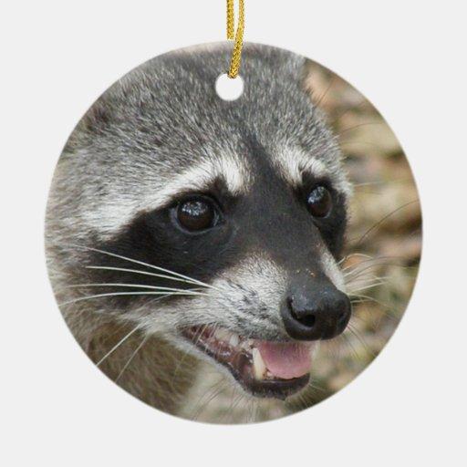 Raccoon Face Ornament
