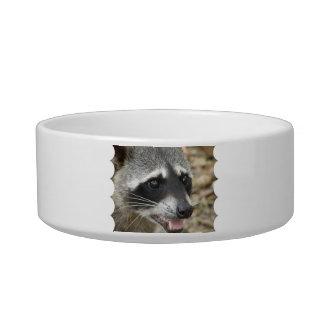 Raccoon Face Pet Bowl