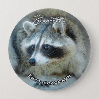 Raccoon Face Pinback Button