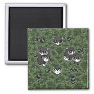 Raccoon Family in a Bush 2 Inch Square Magnet