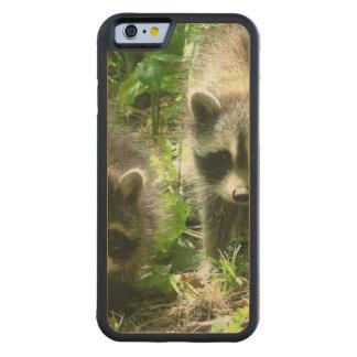 Raccoon Habitat Carved® Maple iPhone 6 Bumper Case