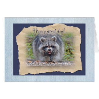 Raccoon - Have a great day Cards