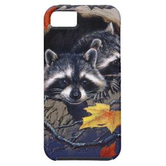 Raccoon Hideaway iPhone 5 Cases