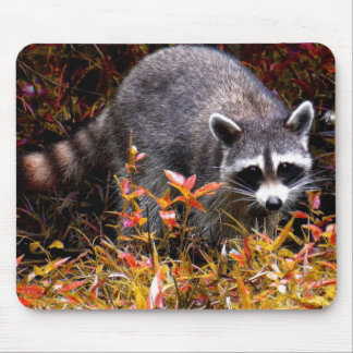 RACCOON IN AUTUMN MOUSE PAD