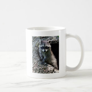 Raccoon in the Den Coffee Mug