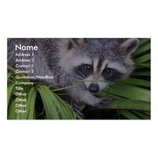 Raccoon In The Plants Business Card