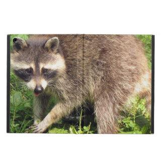 Raccoon iPad Air Cases