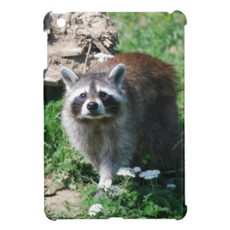 Raccoon iPad Mini Cover