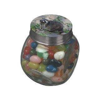 Raccoon Jelly Belly Candy Jar