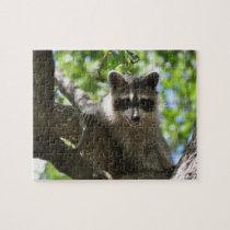 Raccoon - Jigsaw Puzzle
