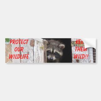 Raccoon Keep Them Wild!! Bumoer Sticker