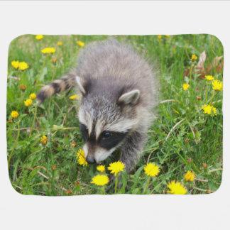 Raccoon kit baby blanket