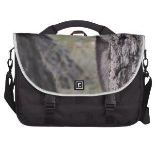 Raccoon Laptop Commuter Bag
