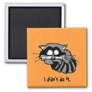 Raccoon Fridge Magnet