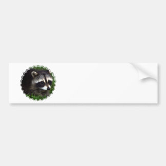 Raccoon Mask Bumper Sticker