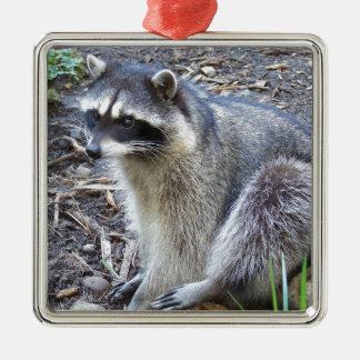 Raccoon Metal Ornament
