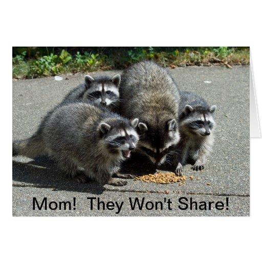 Raccoon Mom & Babies Greeting Card