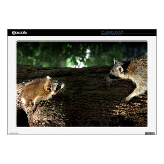 Raccoon Mother and Kit 2 Laptop Decal