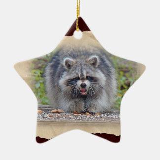 Raccoon - My bird seed! Ceramic Ornament