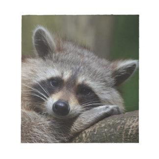 Raccoon Memo Notepads