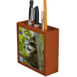 Raccoon Pencil Holder