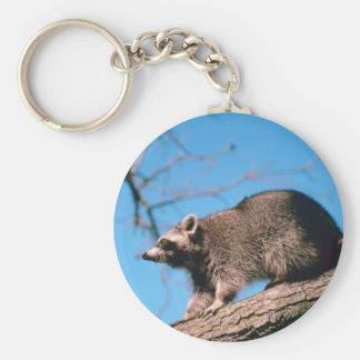 Raccoon Perched Basic Round Button Keychain
