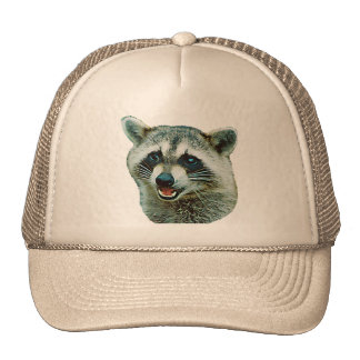 Raccoon Picture Hat