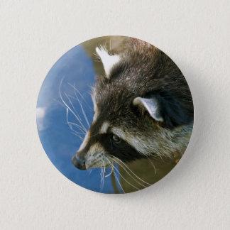 Raccoon Pinback Button
