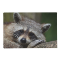 Raccoon Placemat