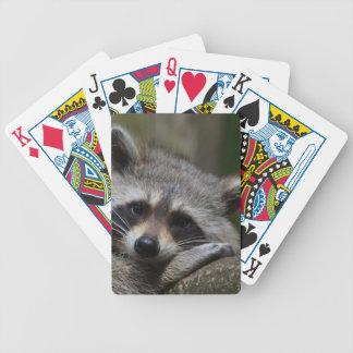 Raccoon Poker Cards